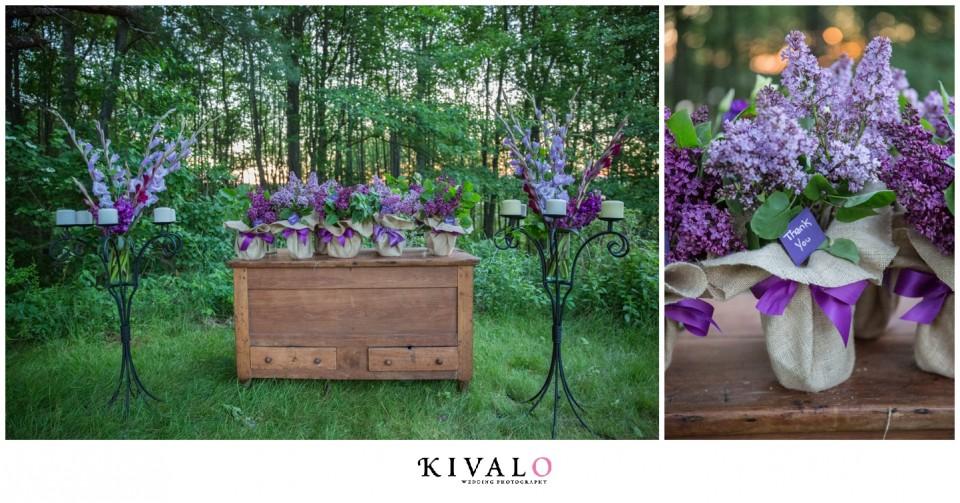 lilac plants