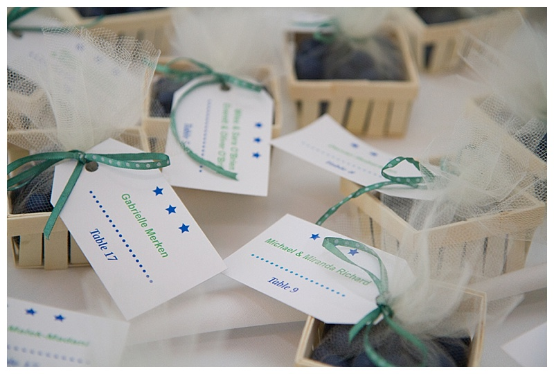 blueberry wedding candy favors