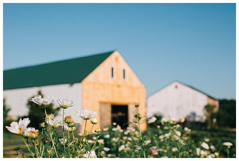 broaturn-farm-wedding-photography